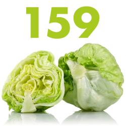 #159 – Iceberg Lettuce